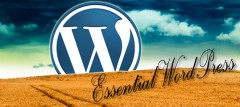 Essential About WordPress - Three Infographics, One Video