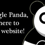 Hello! I'm Google Panda and I'm here to kill your website!