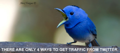There Are Only 4 Ways To Get Traffic From Twitter. Here They Are.