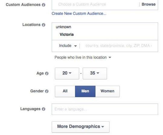 Go Past Custom Audiences With Lookalike Audiences