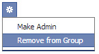 Removing fake account from Facebook Group